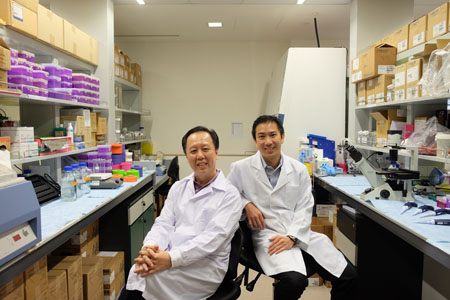 picture of NTU Assoc. Prof. Joachim Loo (right) and SingHealth Assoc. Prof. Lim Kah Leong (left) are developing a new nanomedicine to treat Parkinson