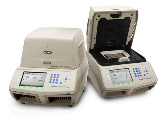 CFX384 Touch Real-Time PCR Detection System by Bio Rad