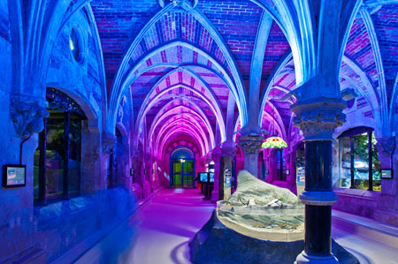 Hach Lange Ensures Water Quality At Brighton Sea Life Centre
